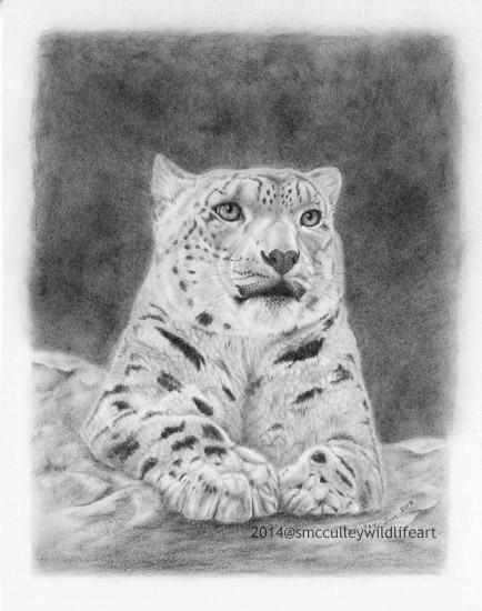 Snow Leopard paper size 8 x10