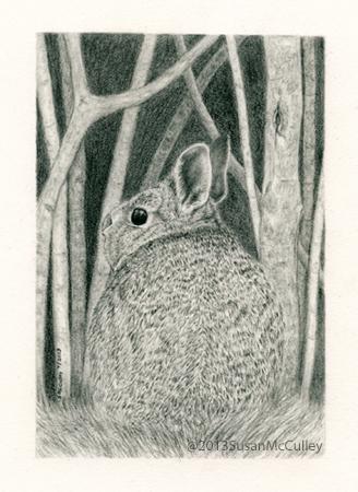 """Rabbit image size 5 x 7, paper size 8 x 10"""""""