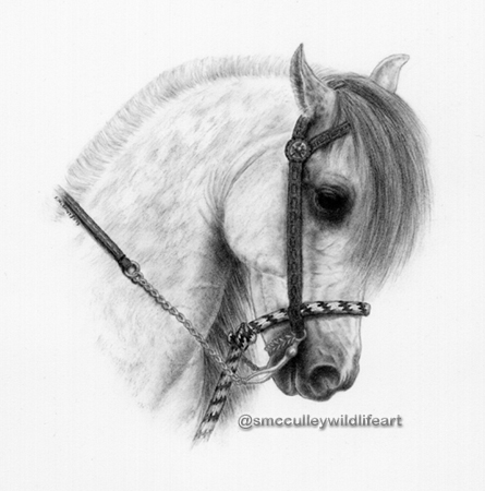 """Andalusian print size 11 x 14"""""""