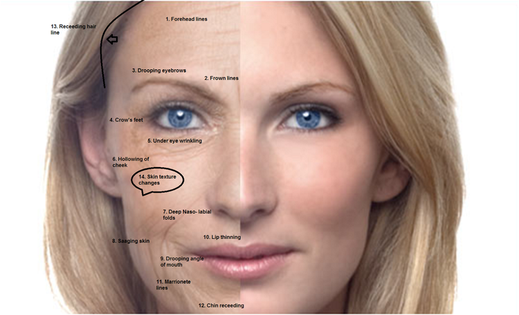 The facial analysis diet 1