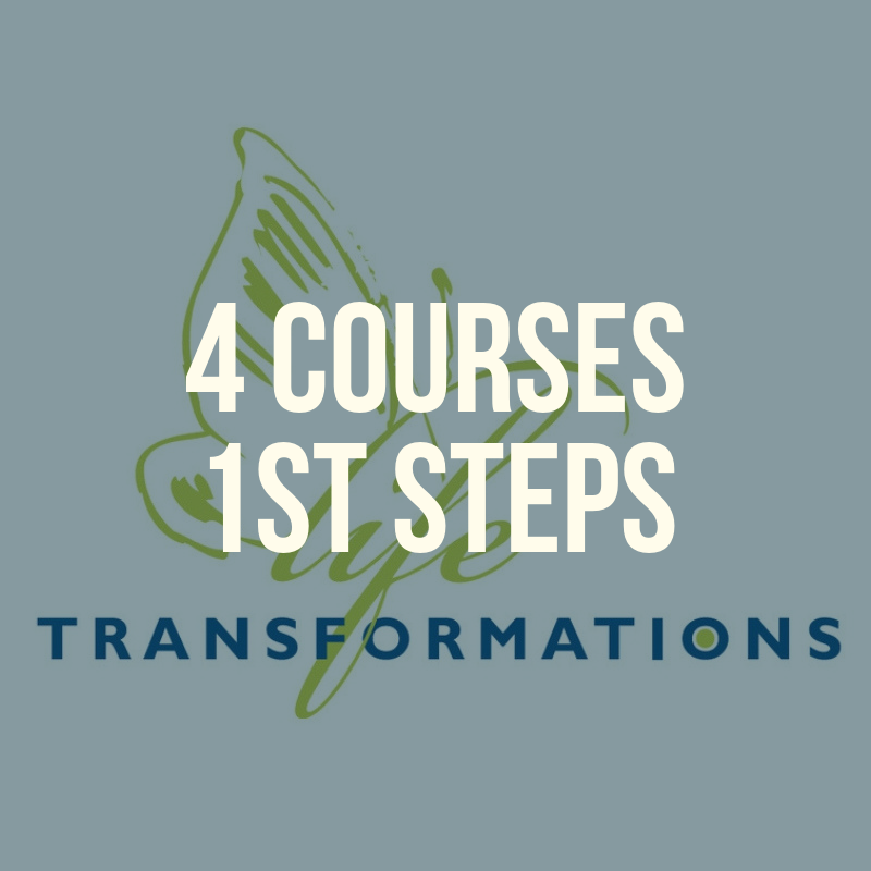 4 courses 1st steps.png