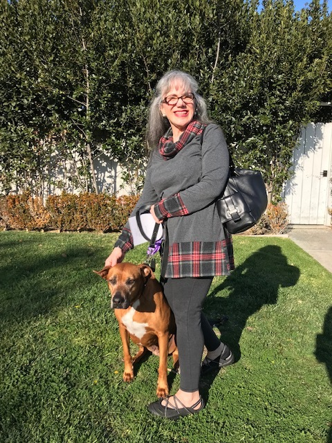 """March 2019 -  Brandy , who was rescued along with Burbon on January 20 from Baldwin park shelter, has been adopted! Her new mom Linda has renamed her Candi and reports that she """"LOVES her life with me. She has 3 squeaky toys that she carries everywhere. It is so funny. She did not like walking at first, but she is enjoying it now."""" Candi's mom recently lost her beloved female Ridgeback so her house and lifestyle was ready and waiting for another sweet RR girl: lots of walks, four beds around the house, lots of time and attention from mom...and her own blanket on the bed. Thank you to  Stonecreek Animal Hospital  for her medical care, Lily for the very thorough homecheck, and to Aspasia for lovingly fostering Brandy and getting her ready for her new wonderful life!"""