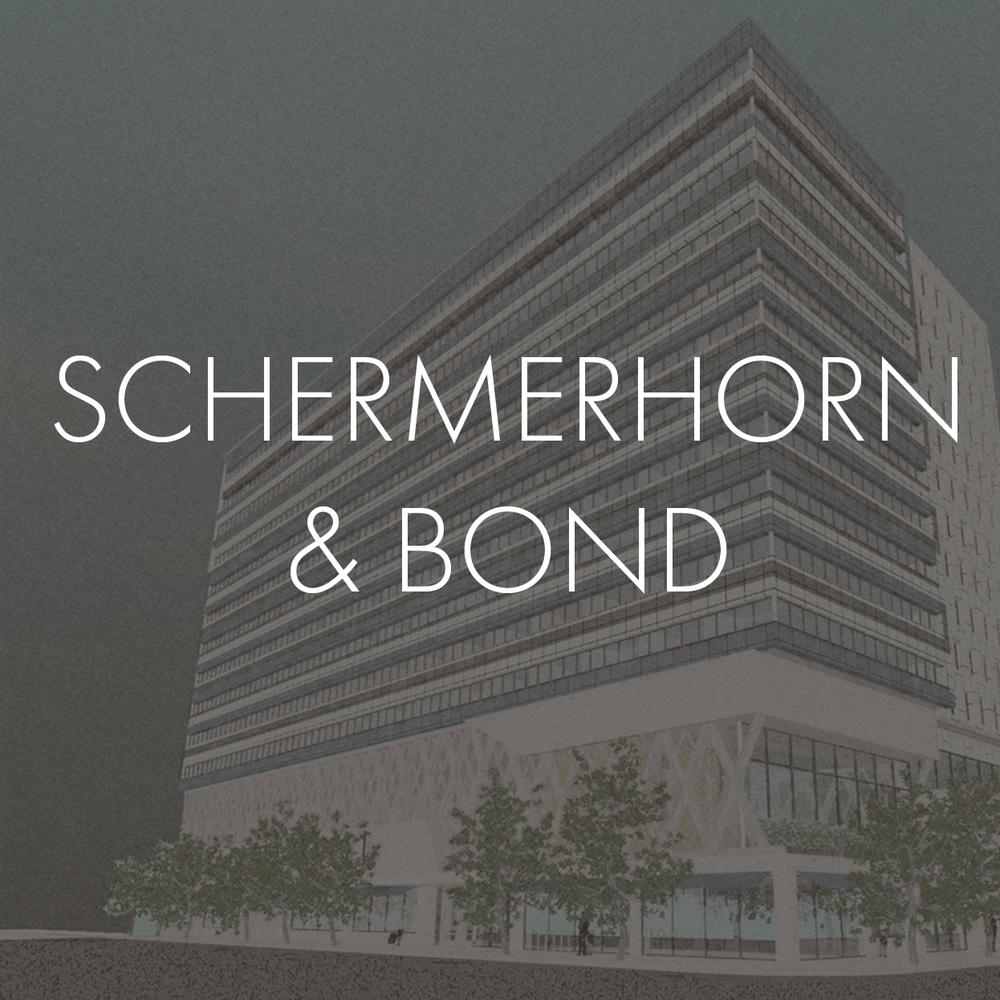 02_THUMBNAIL schermerhorn bond.jpg