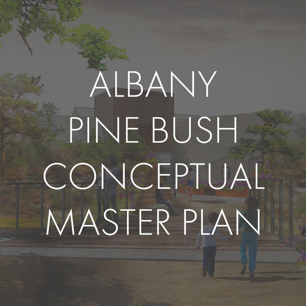 Albany Thumbnail copy.JPG