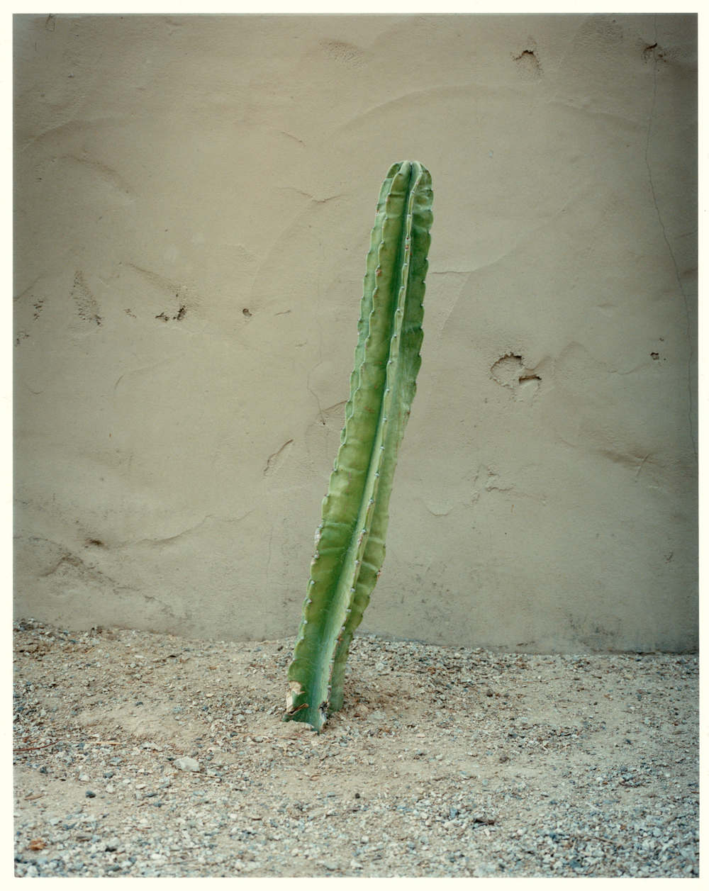 Lucy Levene  L.A. Stories (Untitled 5) , 2009 C-type print (AP 1/2) 20 x 24 inches
