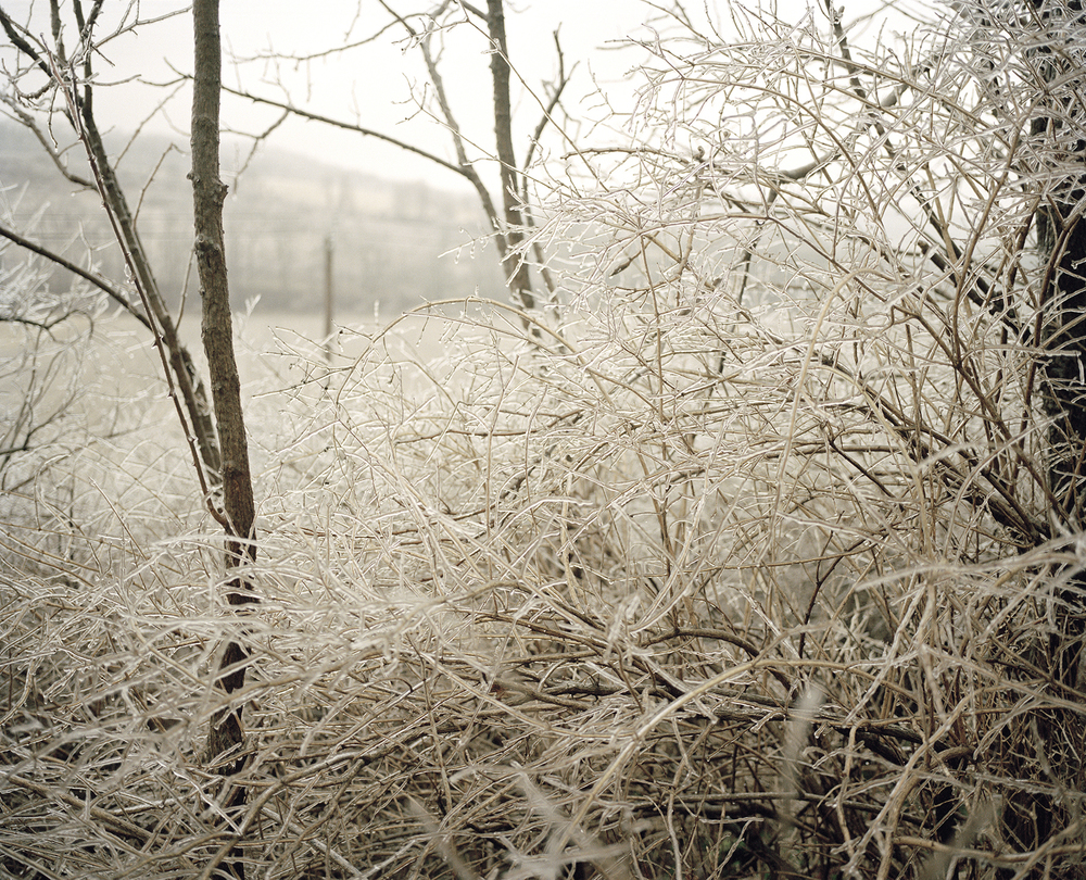 Ice Storm, Between the Thruway and Erie Canal Trail, Fultonville, NY.   , 2007    Ink jet print, edition of 5 + 2AP    16 x 19 inches