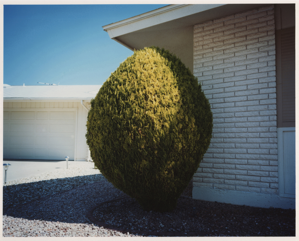 Lucy Levene L.A. Stories (Untitled 14), 2009 C-type print (AP 1/2) 20 x 24 inches