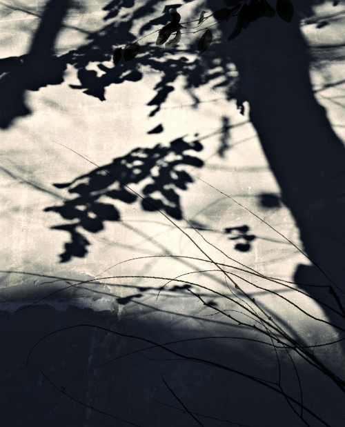 Jocelyne Allucherie Trois de Nuit 2, 2014 Shadows:  Three of Day and Three of Night Series inkjet photograph on canvas 50 x 62.2 inches