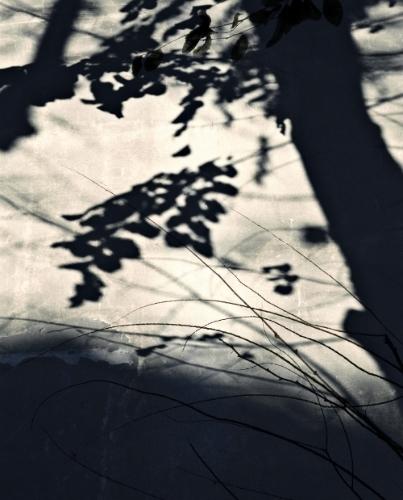 _trois_de_nuit_(2)_2014.jpg