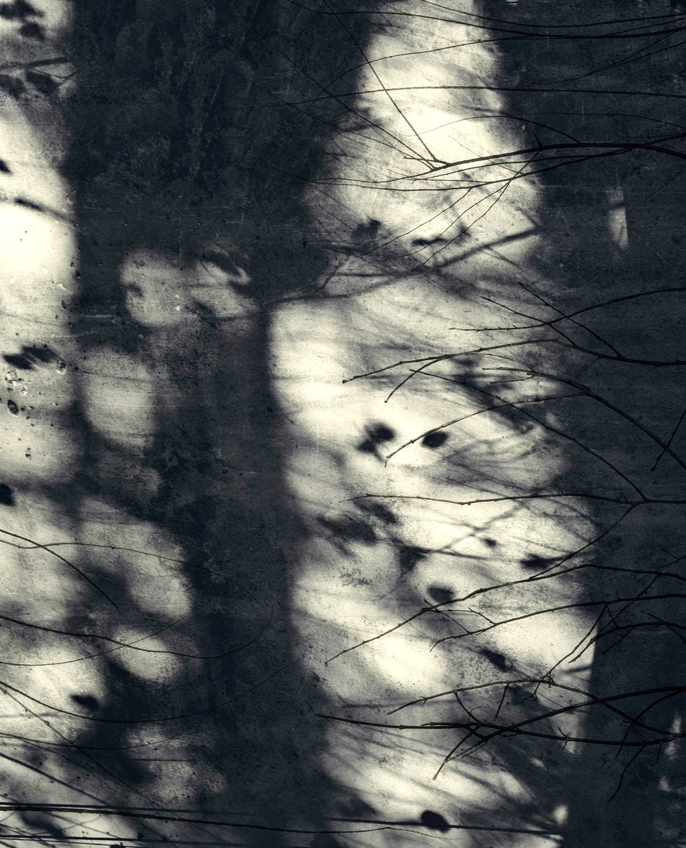 Jocelyne Allucherie Trois de Nuit 4, 2014 Shadows:  Three of Day and Three of Night Series injet photograph on canvas