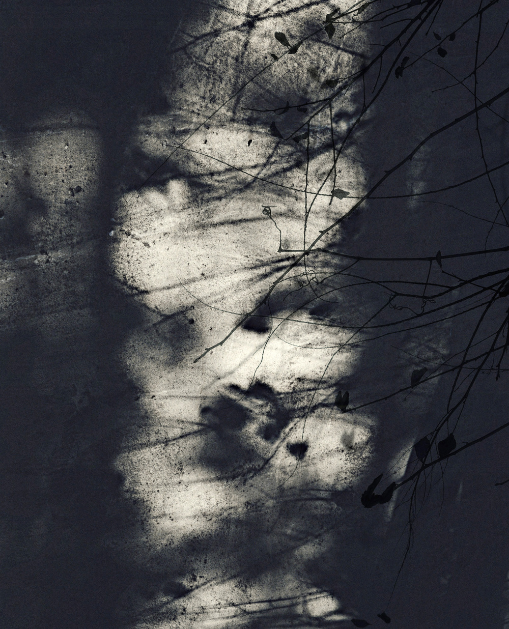 Jocelyne Allucherie Trois de Nuit 6, 2014 Shadows:  Three of Day and Three of Night Series injet photograph on canvas