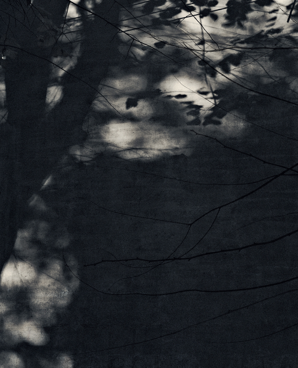 Jocelyne Allucherie Trois de Nuit 5, 2014 Shadows:  Three of Day and Three of Night Series injet photograph on canvas