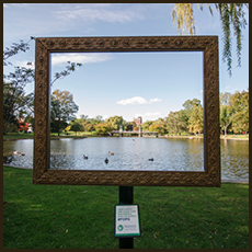 Friends of the Public Garden Outdoor Installation