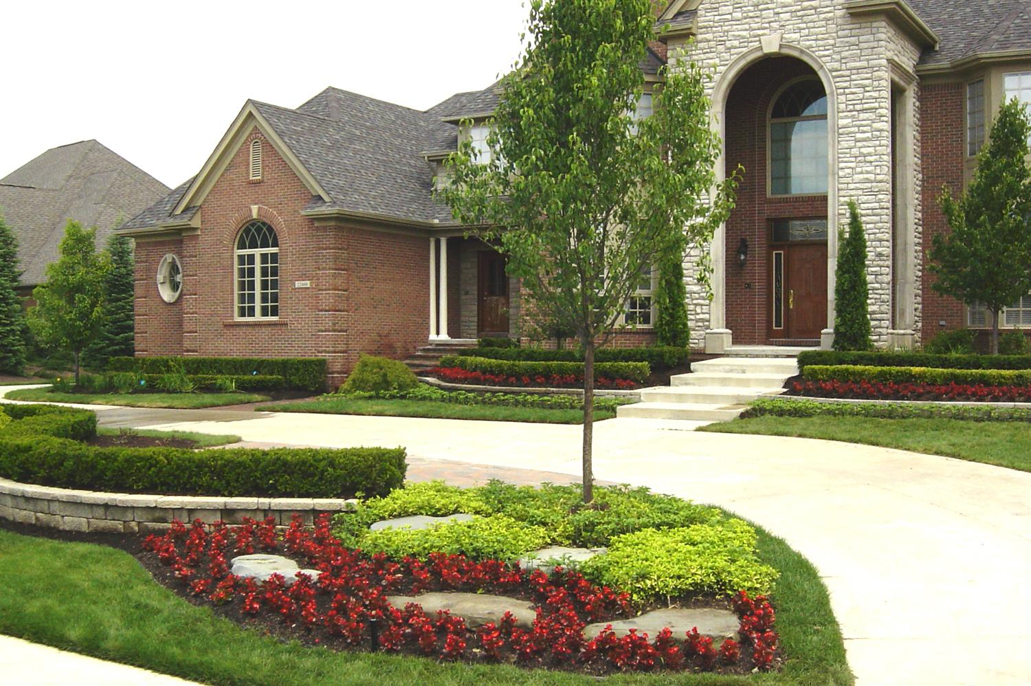 tips on choosing a tree for your front yard hole s greenhouses