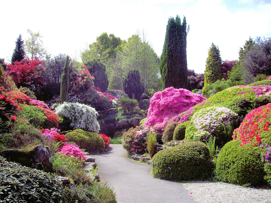 Landscape Design 4 Ways To Create Cohesiveness Holes Greenhouses