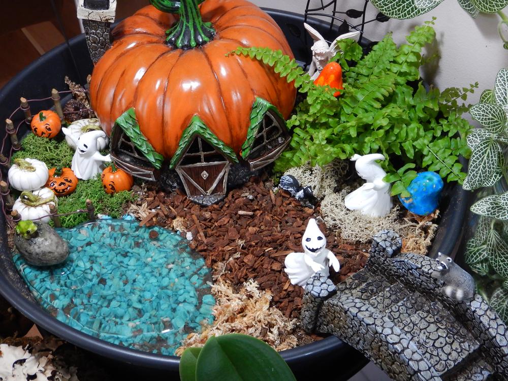 Fairy Garden Sept 2014 - 085.jpg