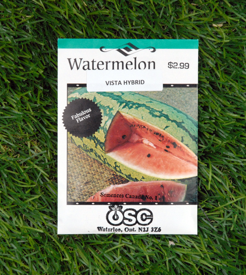 watermelon-vista-hybrid-seeds-edmonton-stalbert