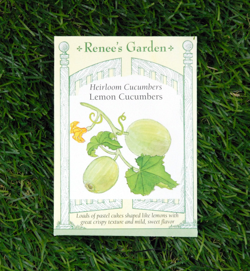 lemon-cucumbers-seeds-heirloom-edmonton-stalbert