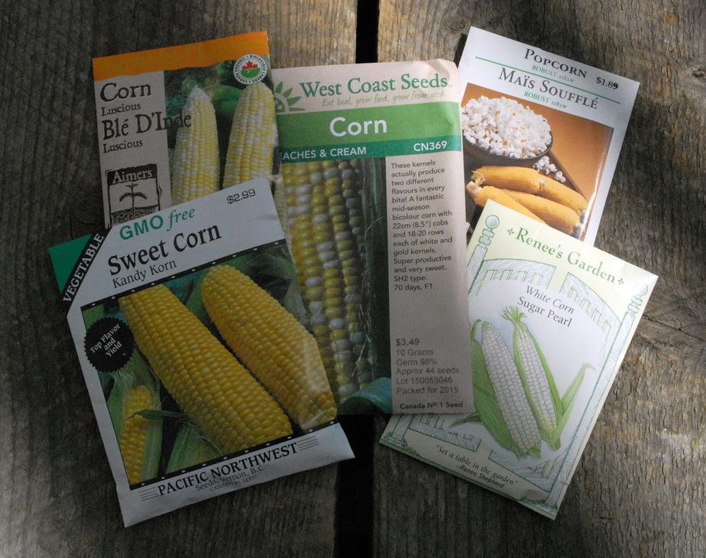 corn- seeds- popcorn-sweet-peaches-edmonton-stalbert-yeg
