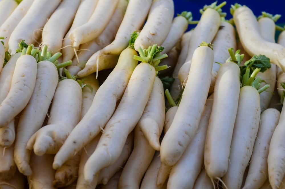daikon-radish-minowase-seeds-edmonton