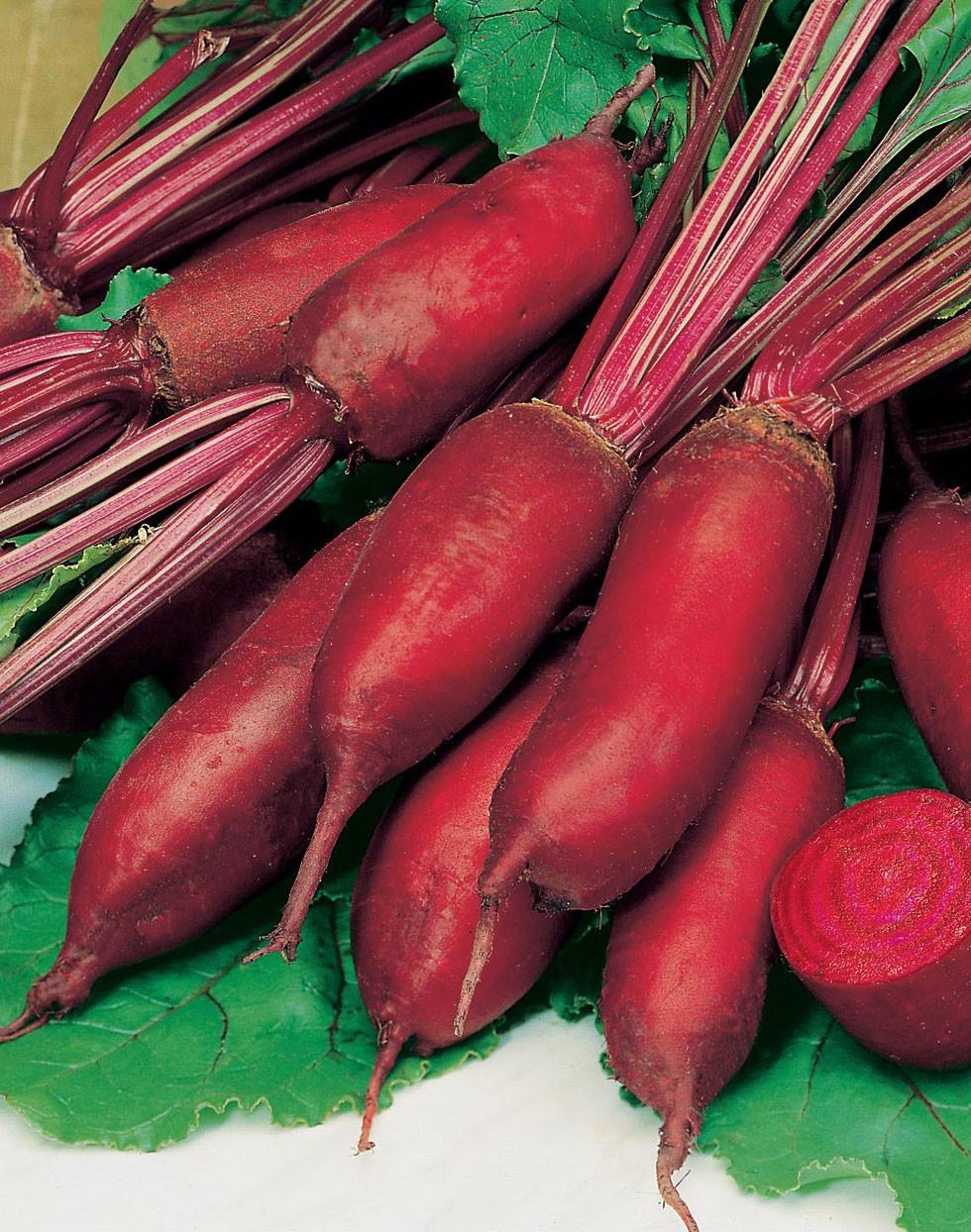 cylindra-beet-seeds-edmonton-alberta