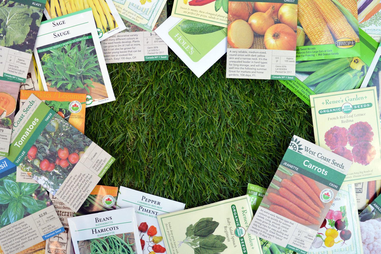 Translating Seed Labels