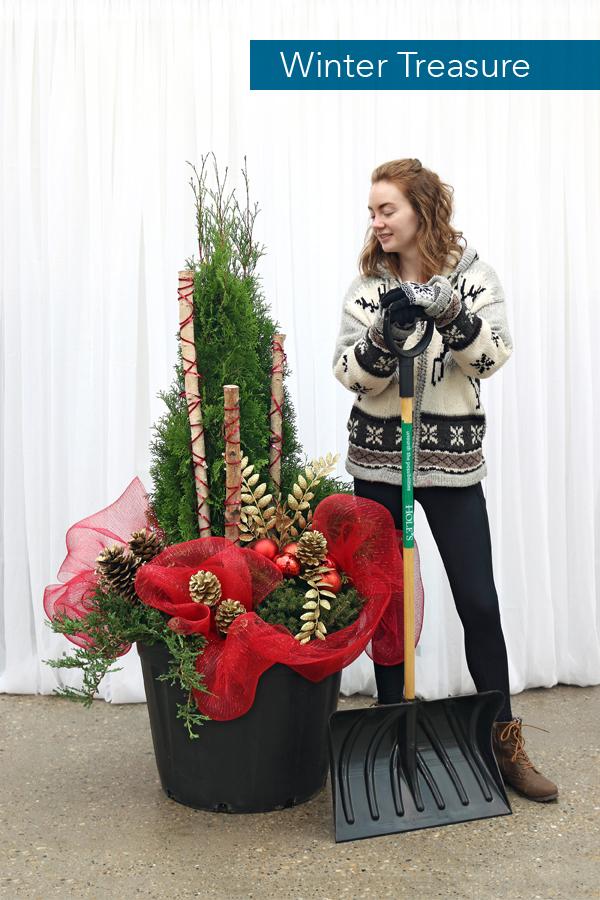 2018 Hole's Winter Planters_B_Winter-Treasure.jpg