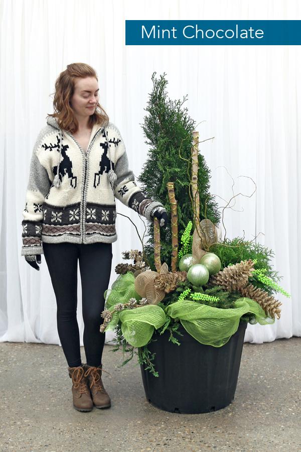 2018 Hole's Winter Planters_C_Mint-Chocolate.jpg