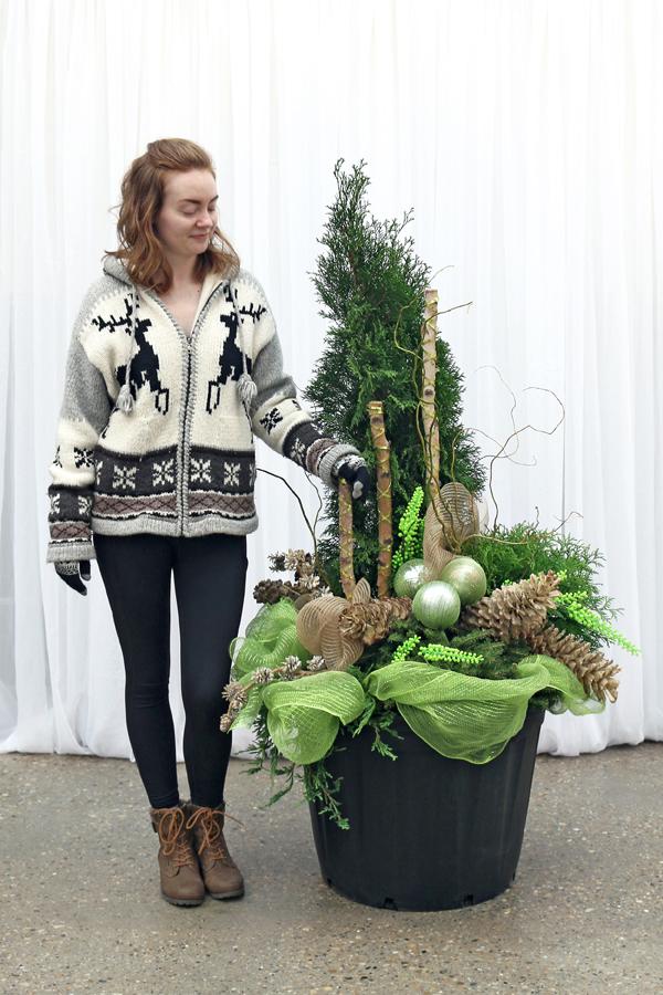 2018-Winter-Planter_C-600x900.jpg