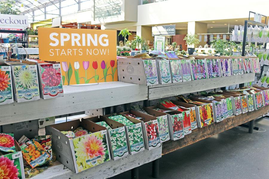 2019-Spring-Bulbs-spring-starts-now.jpg