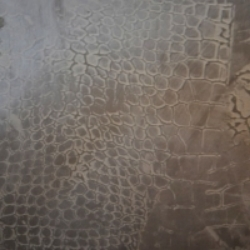 Snake Print  in plaster.  Any print can be achieved.