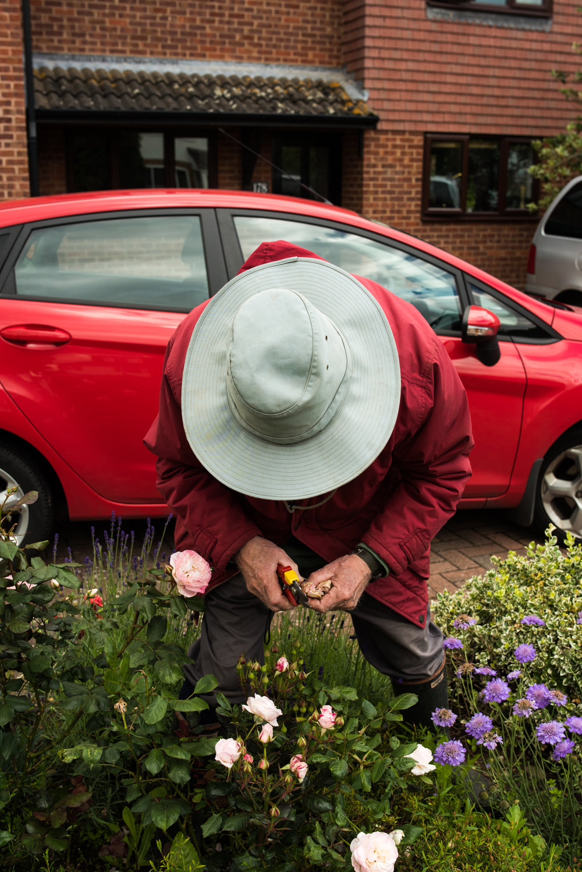Man gardening, outskirts of Stratford 02/06/2016