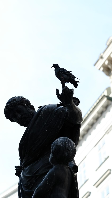Taube auf Statue in der Innenstadt beim Fotowalk X