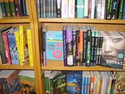 bookchicshelfshot.jpg
