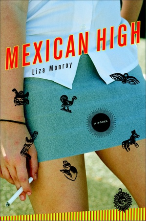 mexicanhighhardcover.jpg