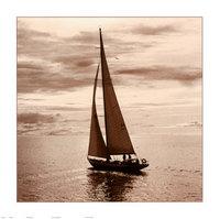 sailing-v.jpg