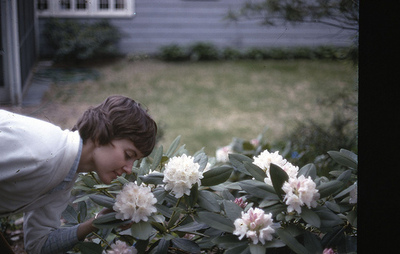 momflowers.jpg