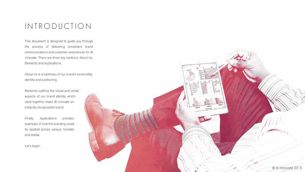 iB Innovate Brand Guidelines-2.jpg