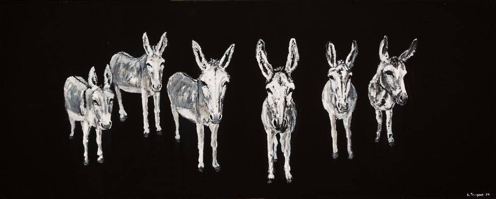 6 Donkeys