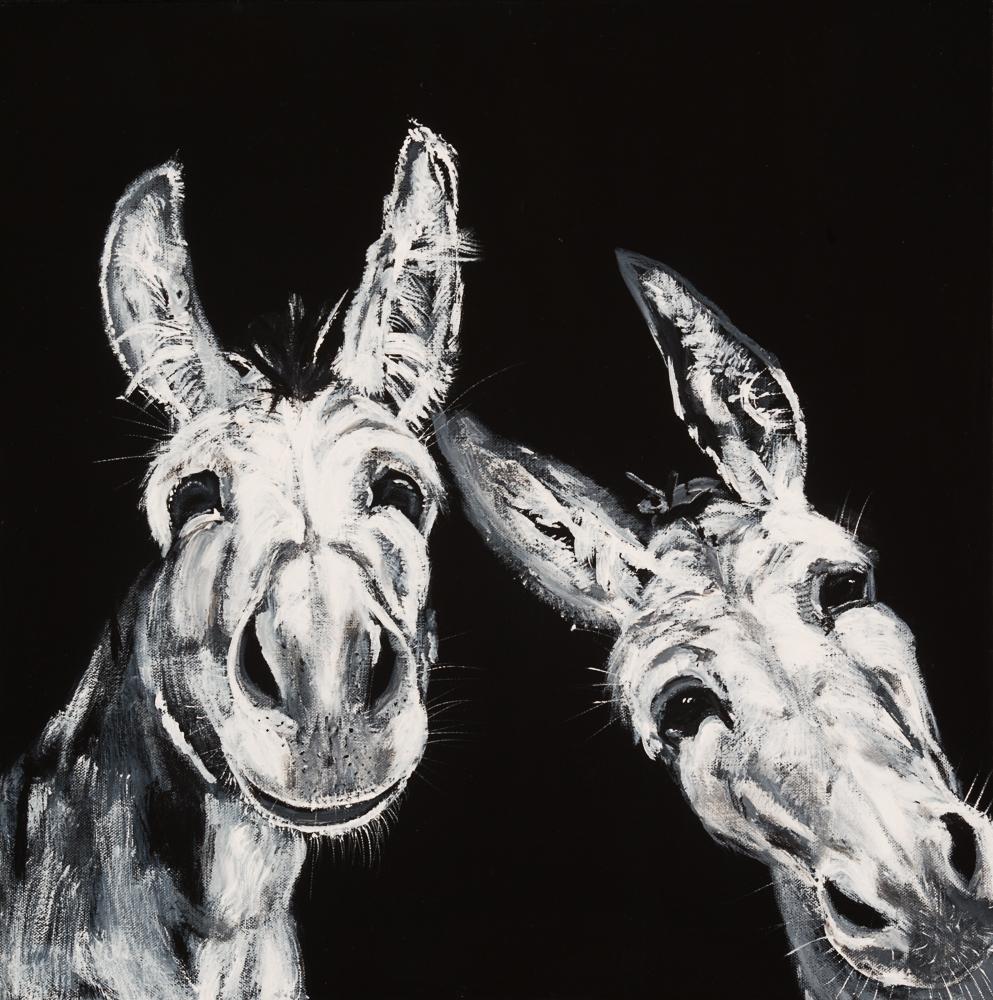 Donkeys 7