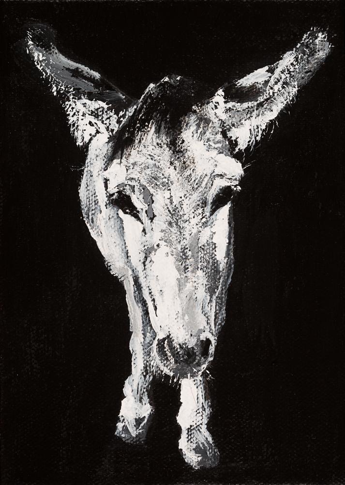 Donkey 18