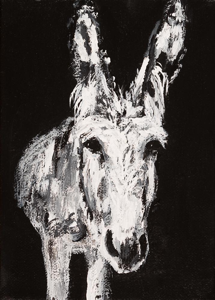 Donkey 22