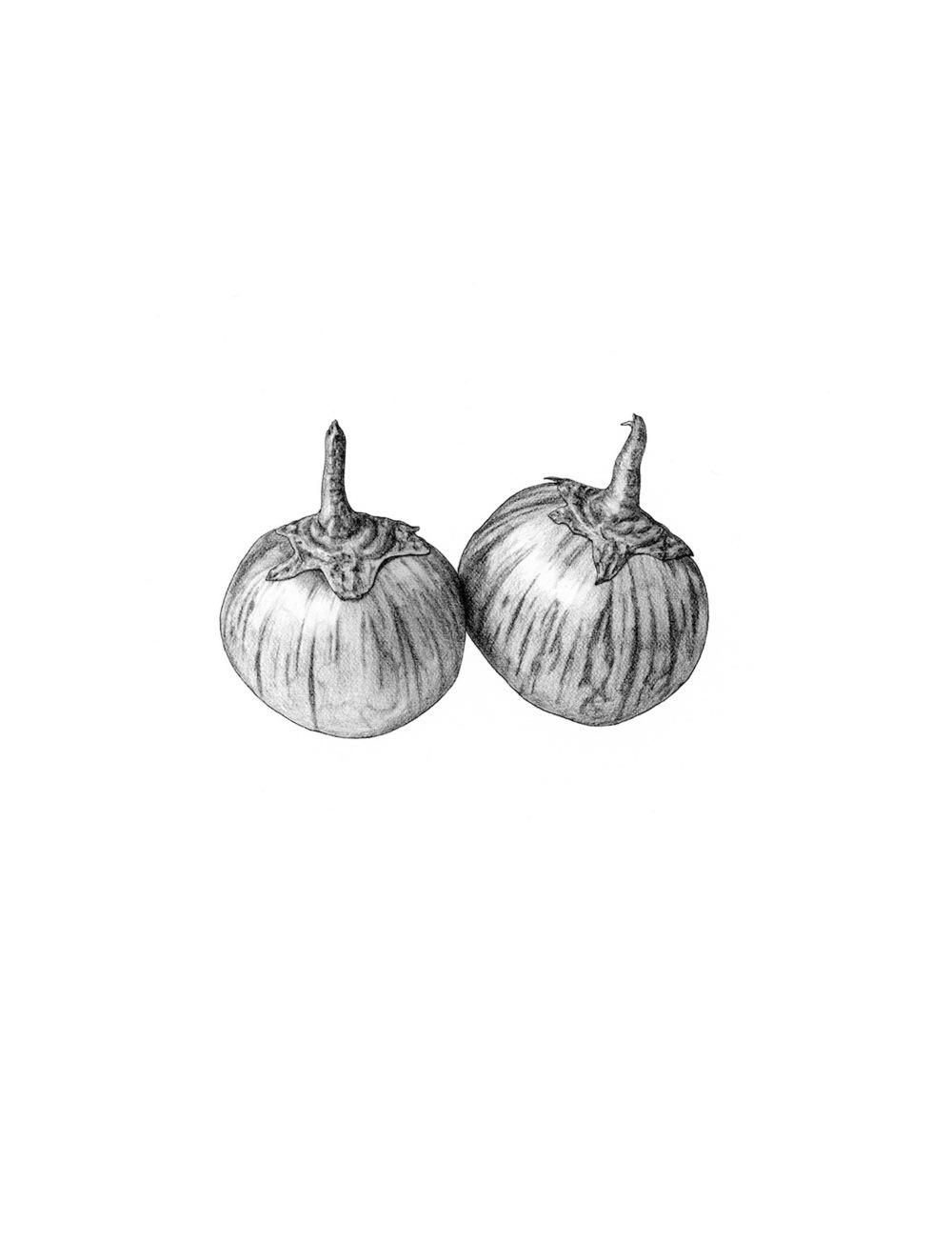 ss.eggplant, thai.jpg