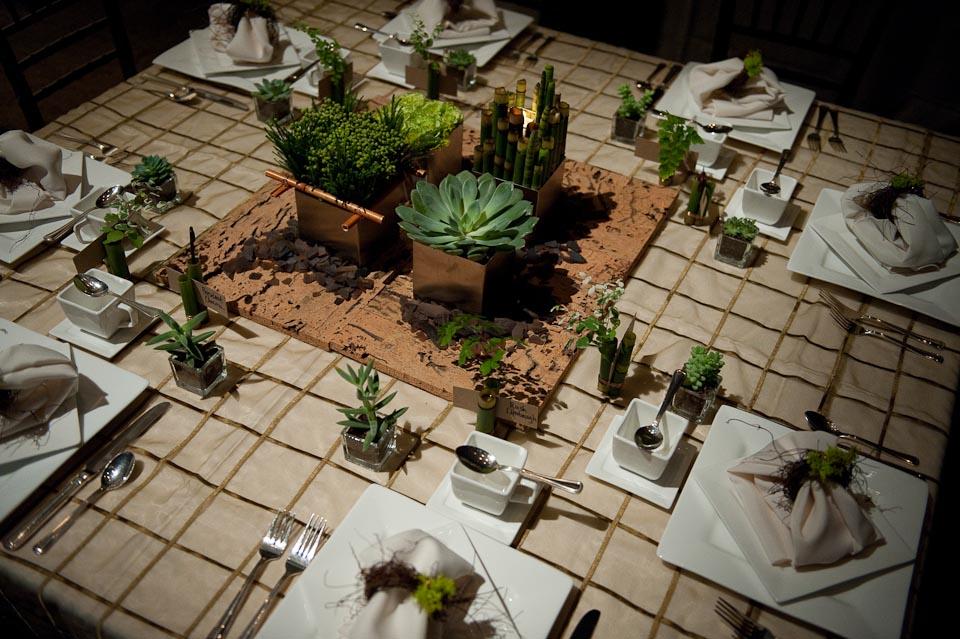 denver succulent centerpiece.jpg