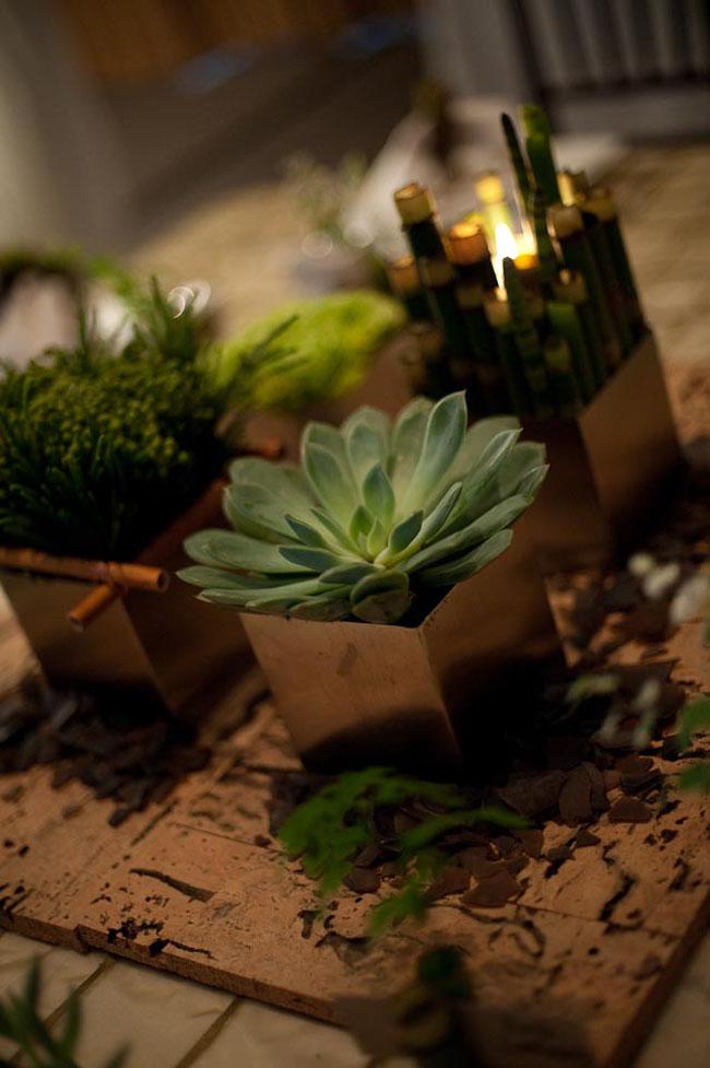 succulent centerpiece.jpg