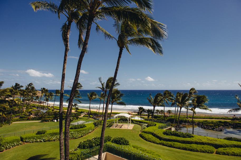 Kauai_Wedding_Photographer_012