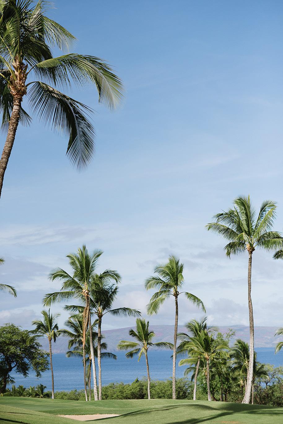 Maui-Wedding-052416-1