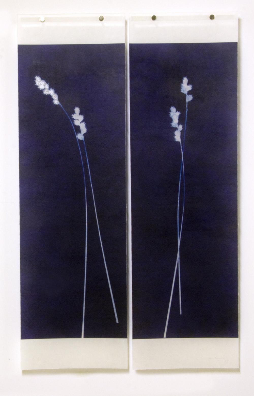 Tall Grass, No.2