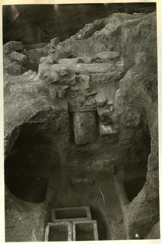 View from above of Tomb 295.