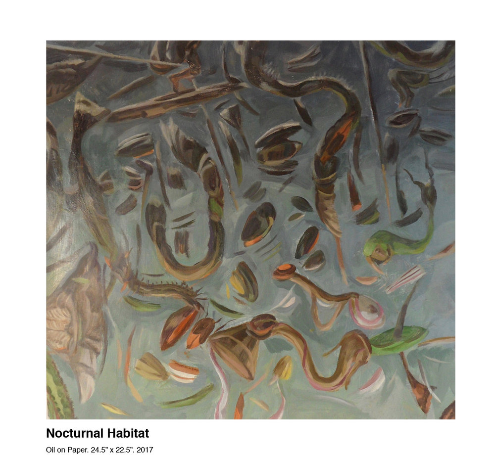 Nocturnal Habitat.jpg